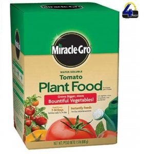 Miracle-Gro Tomato Plant Food Fertilizer