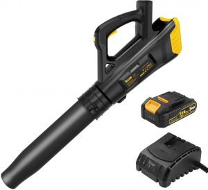 TECCPO 20V 310CFM Lightweight Cordless Leaf Blower With Variable Speed Control, 2.0 Ah Lithium Battery Included - TDAB02G
