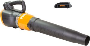 WORX WG546.2 Turbine 20v Powershare 2-speed Cordless Battery-powered Leaf Blower With 2 Batteries