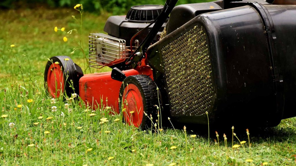 Best Cheap Lawn Mowers