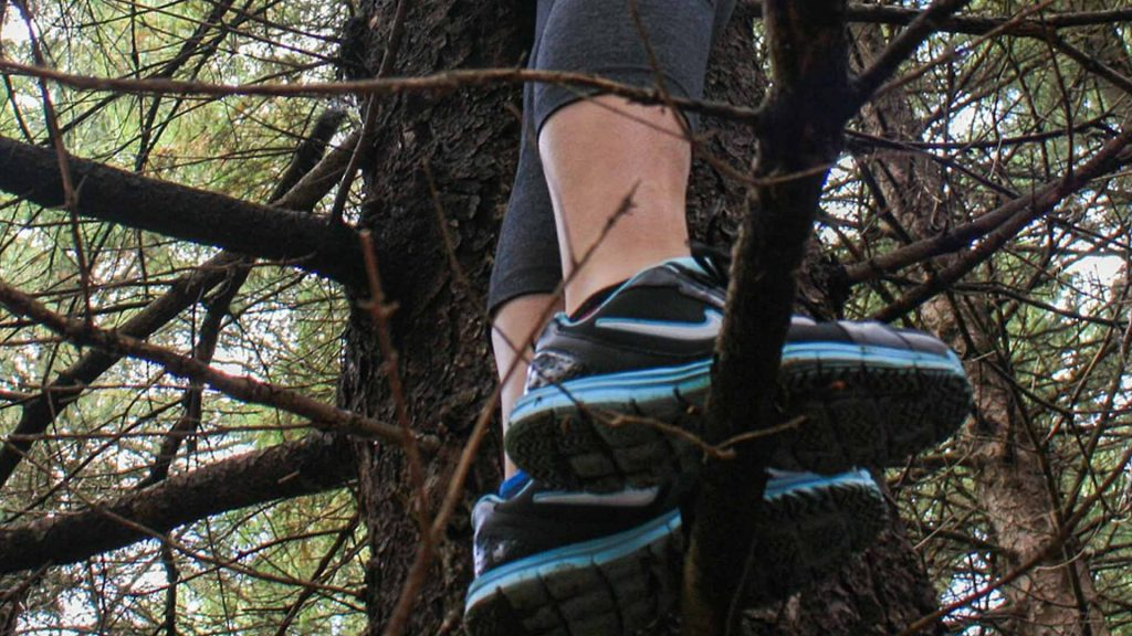 Best Climbing Tree Stands