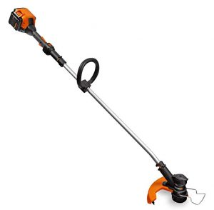 Worx Wg168 40v Lithium Cordless Grass Trimmer And Edger