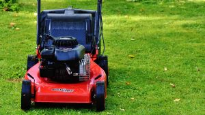 best lawn mowers on the market