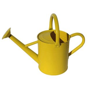 Gardener's Select AW3003P6LZ Watering Can