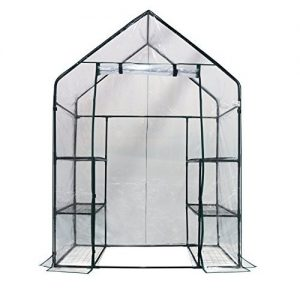 Homewell Mini Walk-In Greenhouse