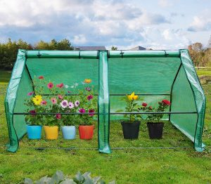 Quictent H Portable Cloche Mini Greenhouse