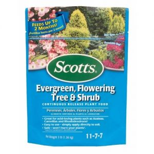 Scotts Evergreen Shrub Food 11-7-7