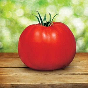 Tomato Best Plants For Straw Bale Gardening
