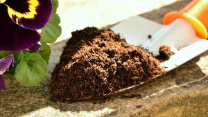 best soil test kits