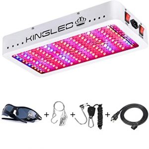 KingLED KingPlus 1200W
