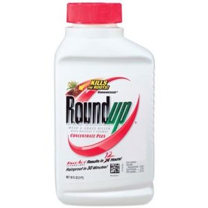 Roundup Concentrate Plus