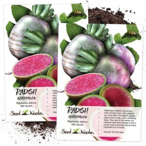 Seed Needs Watermelon Radish